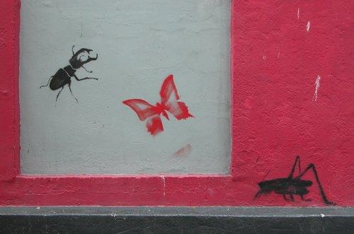 Beetle, Butterfly, Cricket