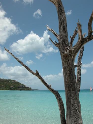 Cinnamon Bay