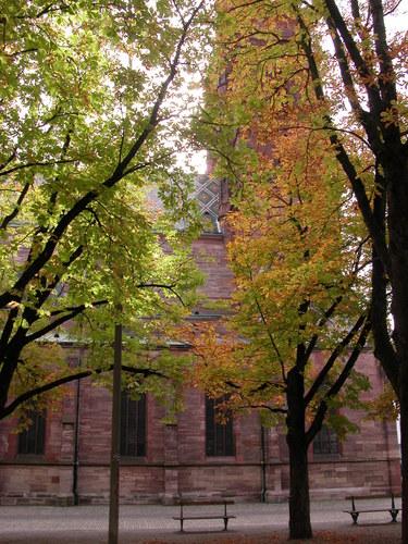 Münster Cathedral (Side)