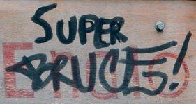 Super Bruce!