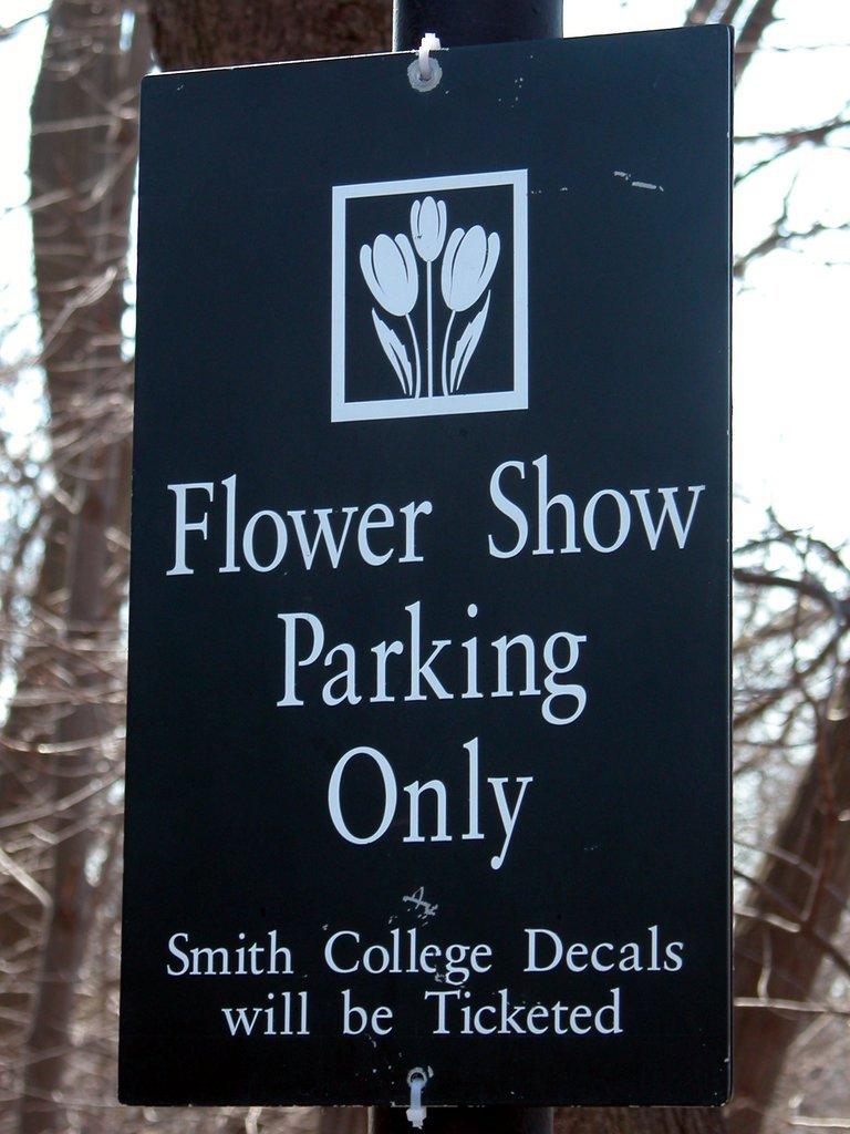 Smith College Spring Bulb Show (xliii)
