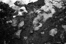 Snow receding