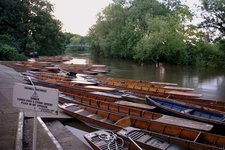 Punts on the Cherwell River