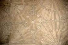 The Divinity School ceiling at The Bodleian
