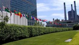 Flags at the U.N.