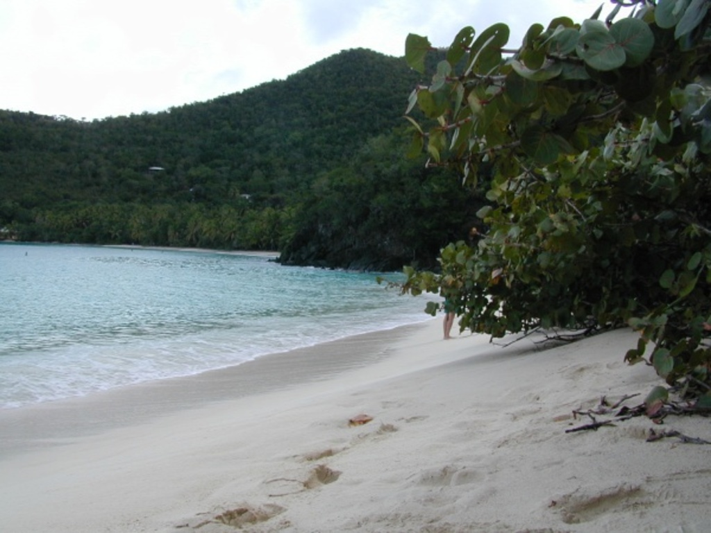 Hawksnest Bay