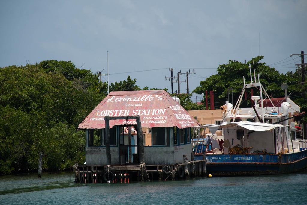Lorenzillo's Lobster Station