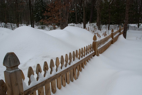 Four foot fence