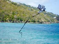 Pirate kite