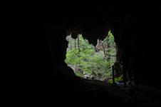 Westcave Preserve