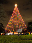 Zilker holiday tree