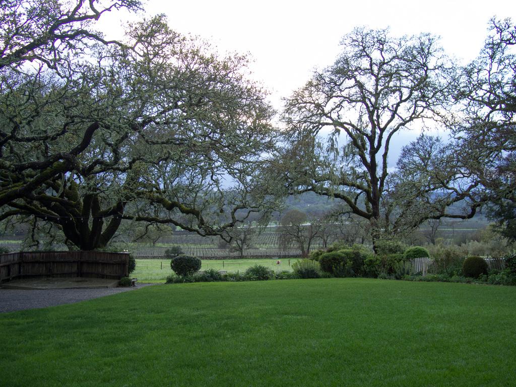 Beltane Ranch