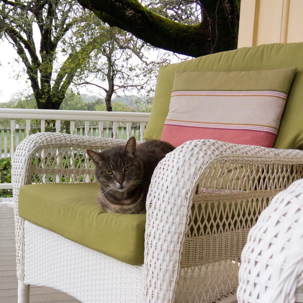 It's my porch