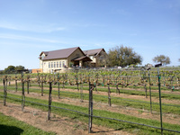 Perissos Vineyard and Winery