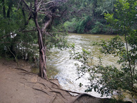 Barton Creek after the rain