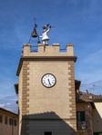 Montepulciano harlequin