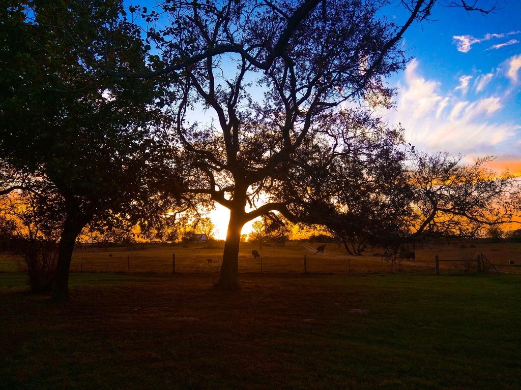Sunset in Cuero