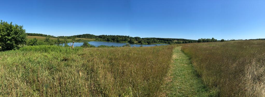Stroll panorama