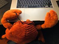 Alimango wants to help with debugging