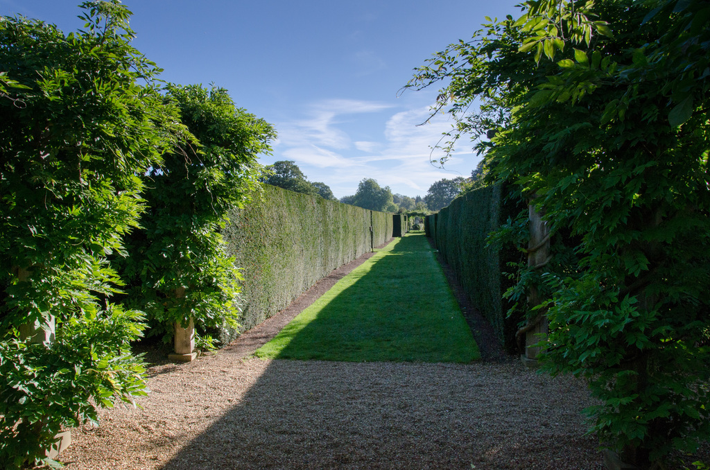 Walled garden path